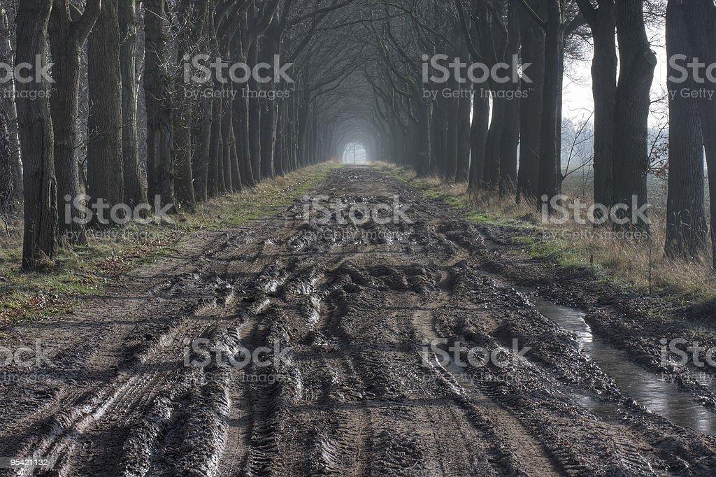 Schlammigen road Lizenzfreies stock-foto
