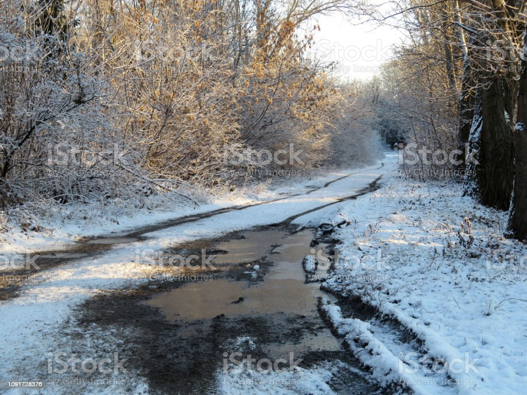 Winter landscape with rural off-road, frozen puddles in the forest