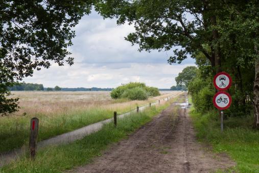 Muddy road through the heathland