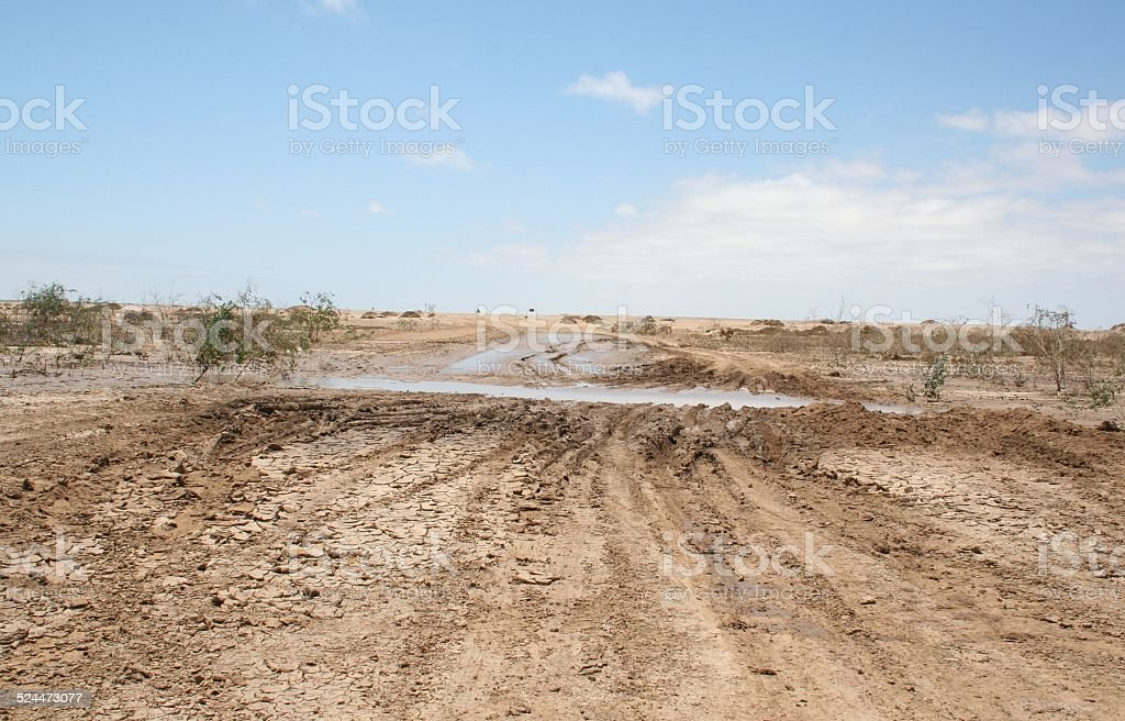 Muddy Salt Road after heavy rain, Skeleton Coast, Namibia, Africa foto