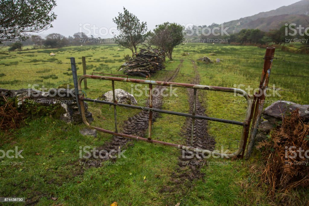 Muddy tracks in Co Kerry field, with rusty farm gate stock photo
