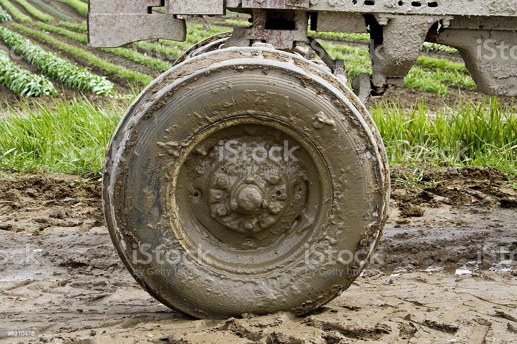 Muddy wheel stock photo