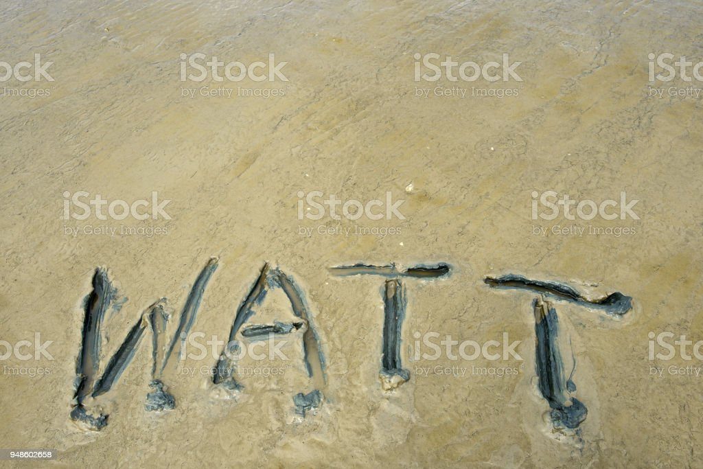 Mudflat of north sea with the word 'Watt' (copy space) stock photo