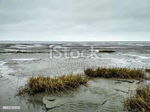 Mudflat World Heritage Natural Site In Schillig - Stockowe zdjęcia i więcej obrazów Bez ludzi