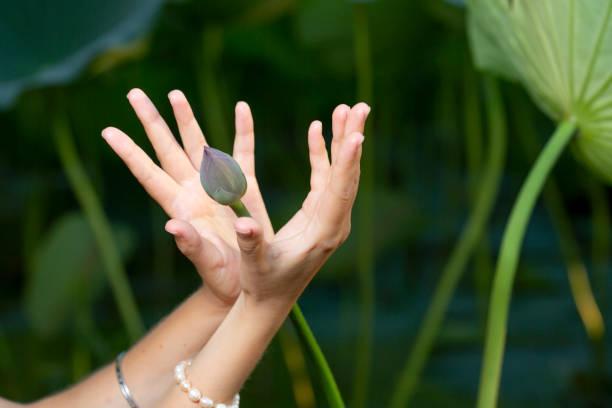 mudra hand jungen frau sind in besonderer weise in einem yoga gefaltet. hinter einem stark verschwommenen hintergrund - kundalini yoga stock-fotos und bilder