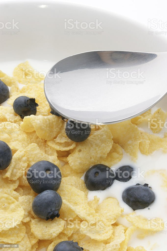 Muesli milk and blueberries in a white bowl royalty-free stock photo