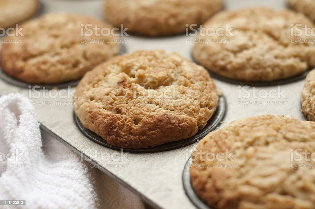 Muffins in muffin pan royalty-free stock photo