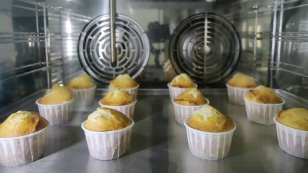 Muffins in Papierbecher backt im Ofen. Blick durch das Glas. – Foto