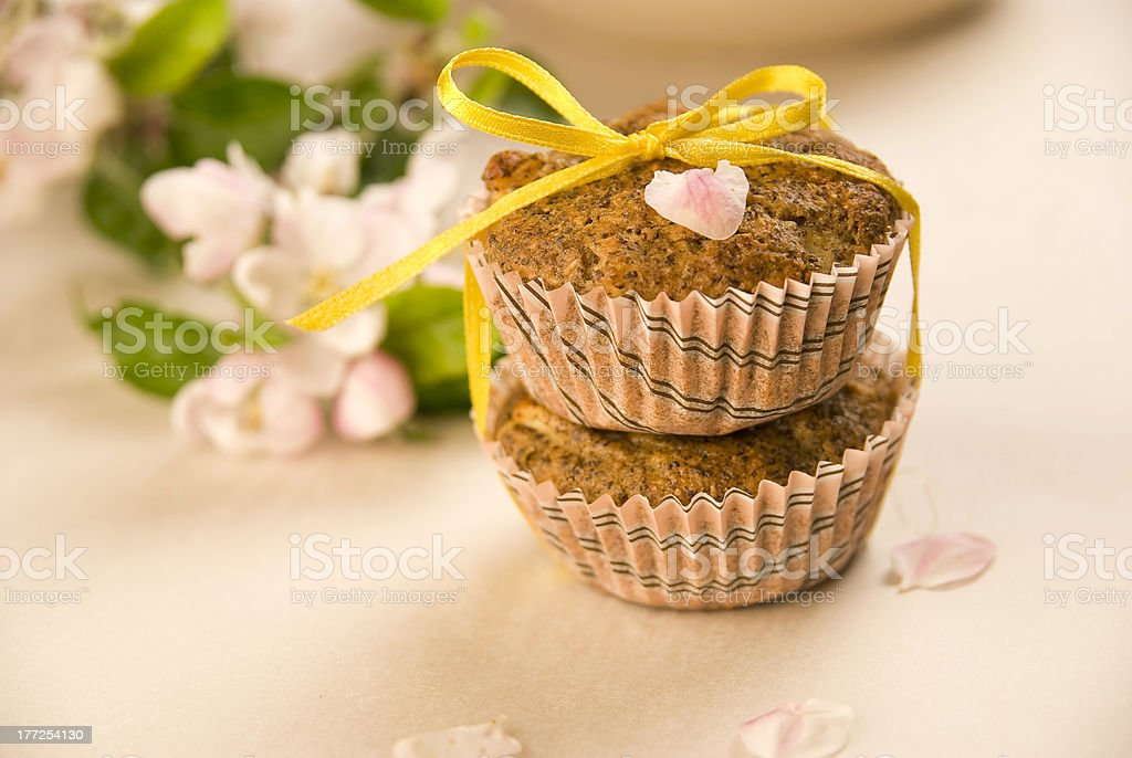 Muffins with apples and poppy seeds stock photo