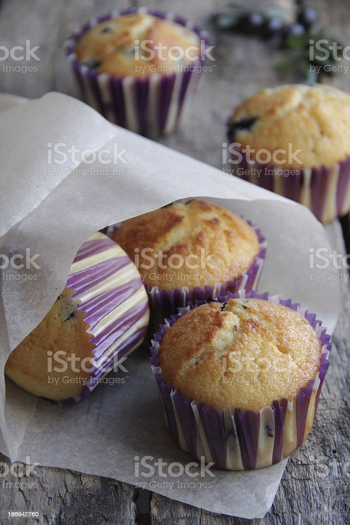 Muffins with blueberries. royalty-free stock photo