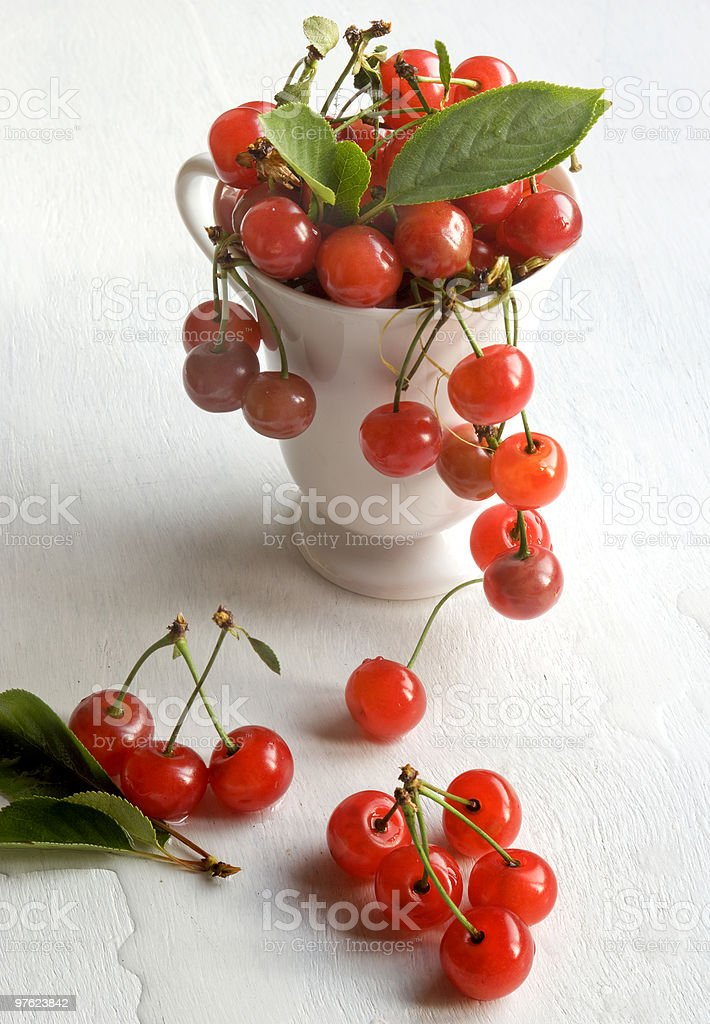 mug full of morello cherry royalty-free stock photo
