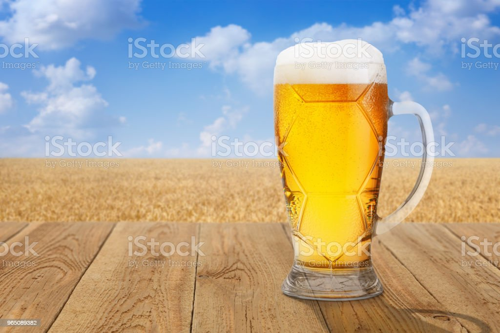 mug of beer against wheat field royalty-free stock photo