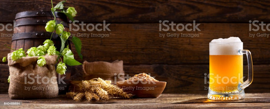 Mug of beer with green hops and wheat ears stock photo