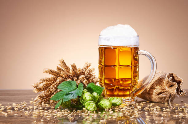 A mug of fresh beer and natural ingredients of brewing stock photo