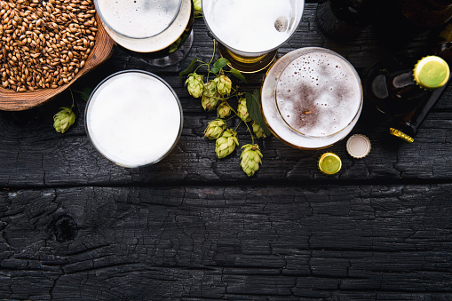 Mugs of beer with green hops and wheat on wooden black background