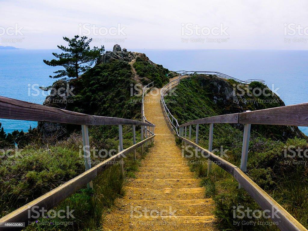 Muir Beach Overlook Path, California stock photo
