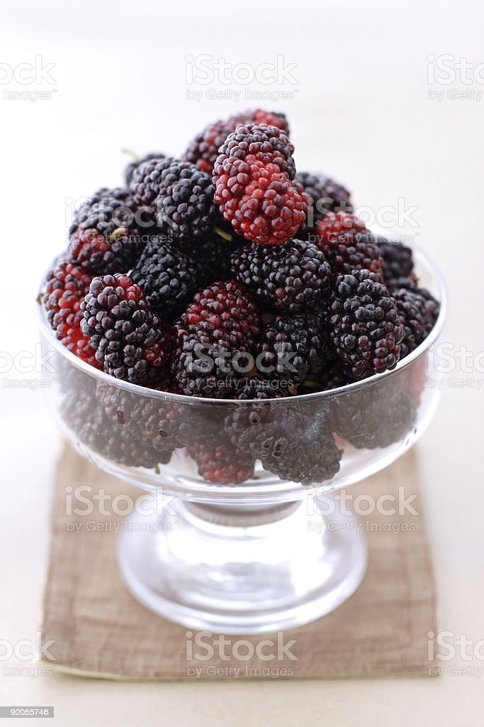 mulberry in a glass royalty-free stock photo