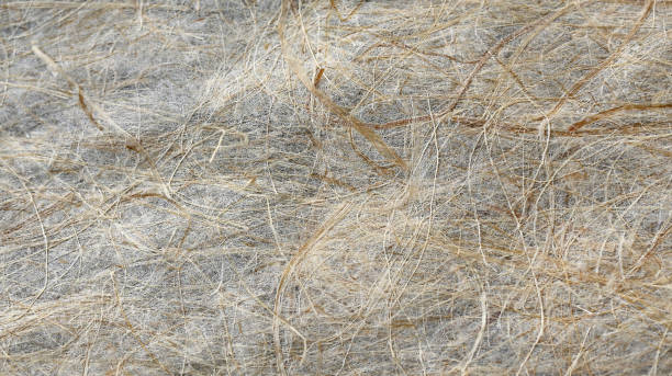 Mulberry paper texture. stock photo