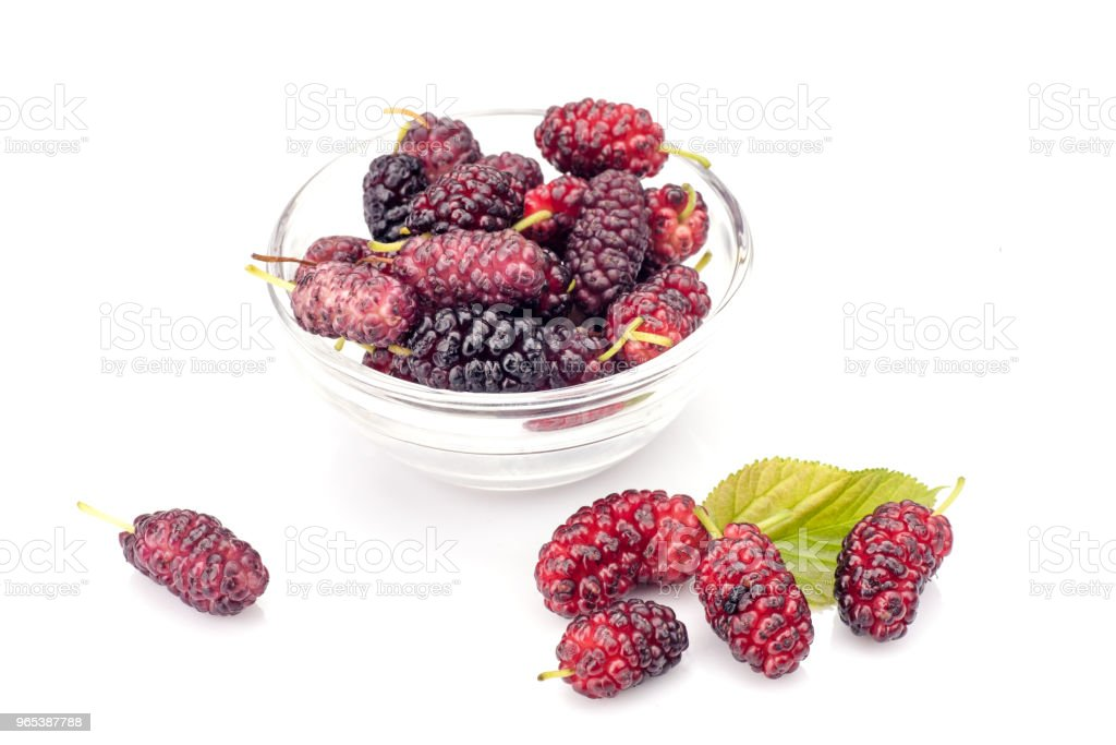 Mulberry royalty-free stock photo