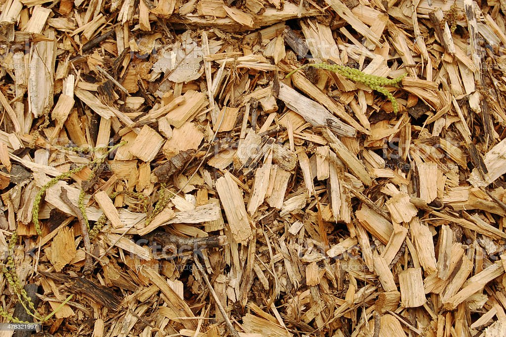 Mulch close-up royalty-free stock photo
