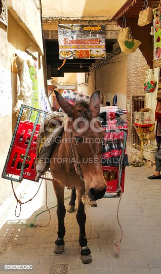 istock Mule Loaded with Boxes filled with Coke 696982080