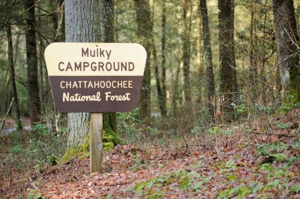 Mulky Campground sign in Chattahoochee National Forest stock photo