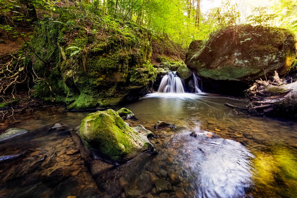 Mullerthal in Luxembourg stock photo