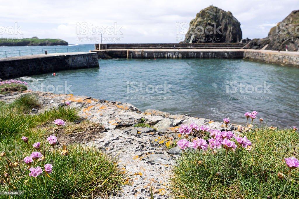 Mullion Harbour entrance stock photo