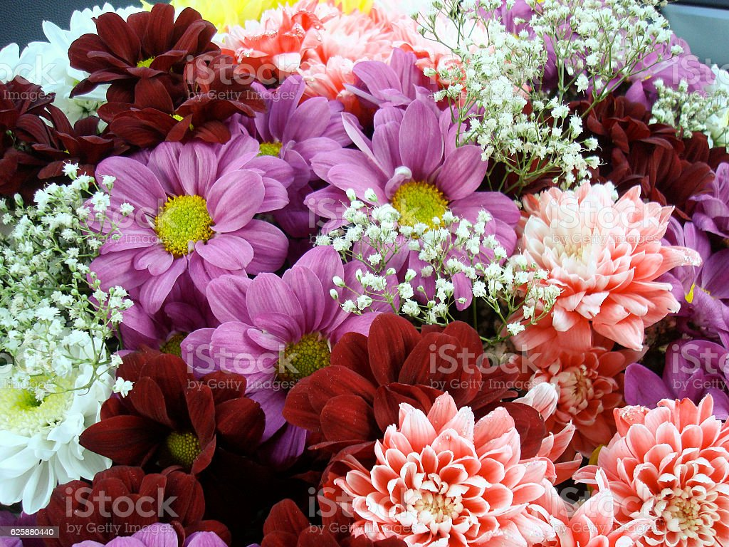 Multi Color Bouquet With Such Flower As Dahlia And Chrysanthemum ...