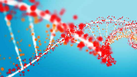 Multi colored DNA strand
