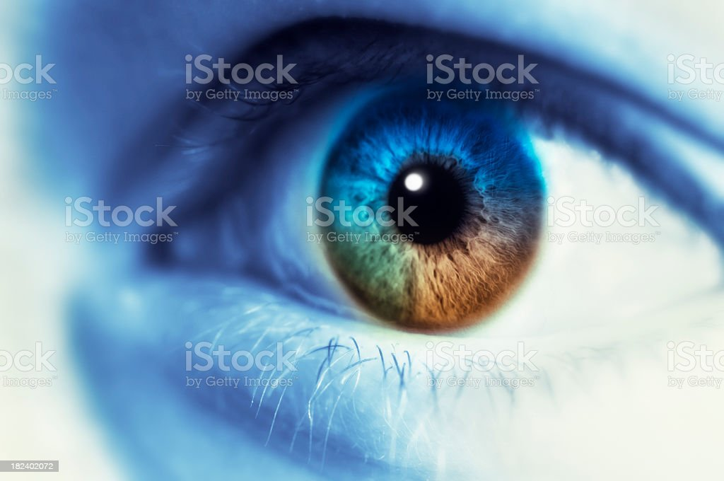 Multi Colored Eye royalty-free stock photo