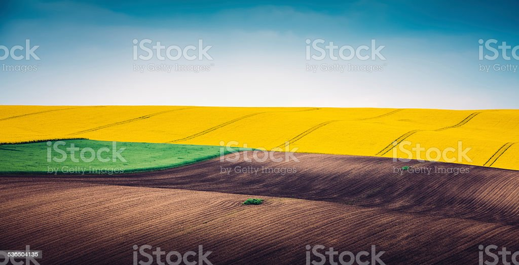 Multi Colored Panoramic Spring Field stock photo