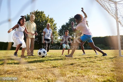 829627936istockphoto Multi generation black family playing football in a garden 1045347424