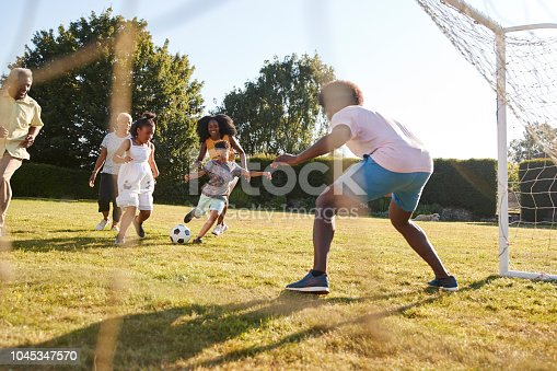 829627936istockphoto Multi generation black family playing football in a garden 1045347570