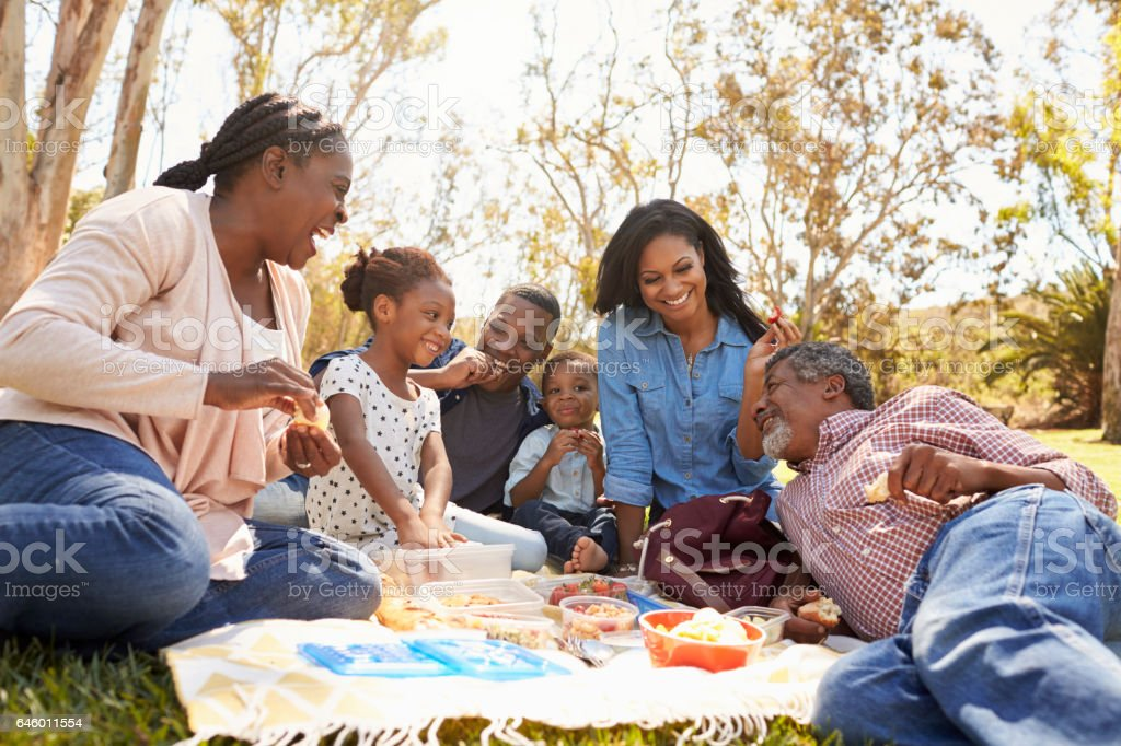 Multi Generation Family Enjoying Picnic In Park Together stock photo