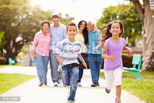 istock Multi Generation Family Walking In Park Together 514134667