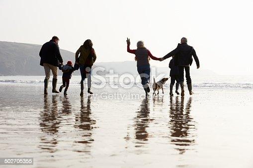 510042945 istock photo Multi Generation Family Walking On Winter Beach With Dog 502705355
