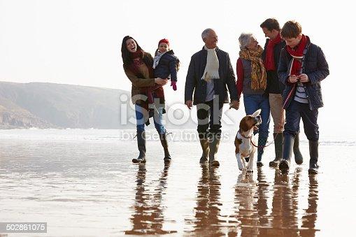 510042945 istock photo Multi Generation Family Walking On Winter Beach With Dog 502861075