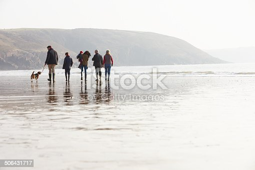 istock Multi Generation Family Walking On Winter Beach With Dog 506431717