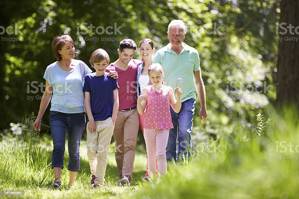 Multi Generation Family Walking Through Summer Countryside stock photo
