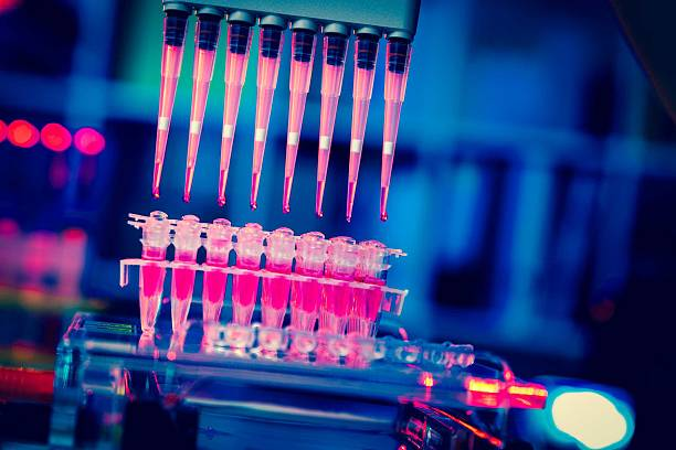 multi pipette    research of cancer stem cells stock photo