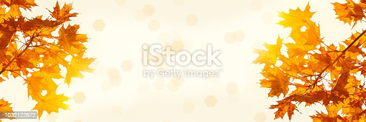 istock Multicolor maple leaves on the background of sunny autumn sky. Bright autumn foliage background. Copy space for your text 1032122672