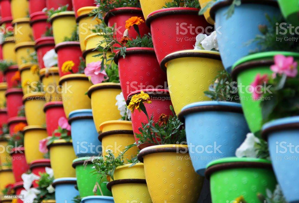 Multicolor pots with flowers foto
