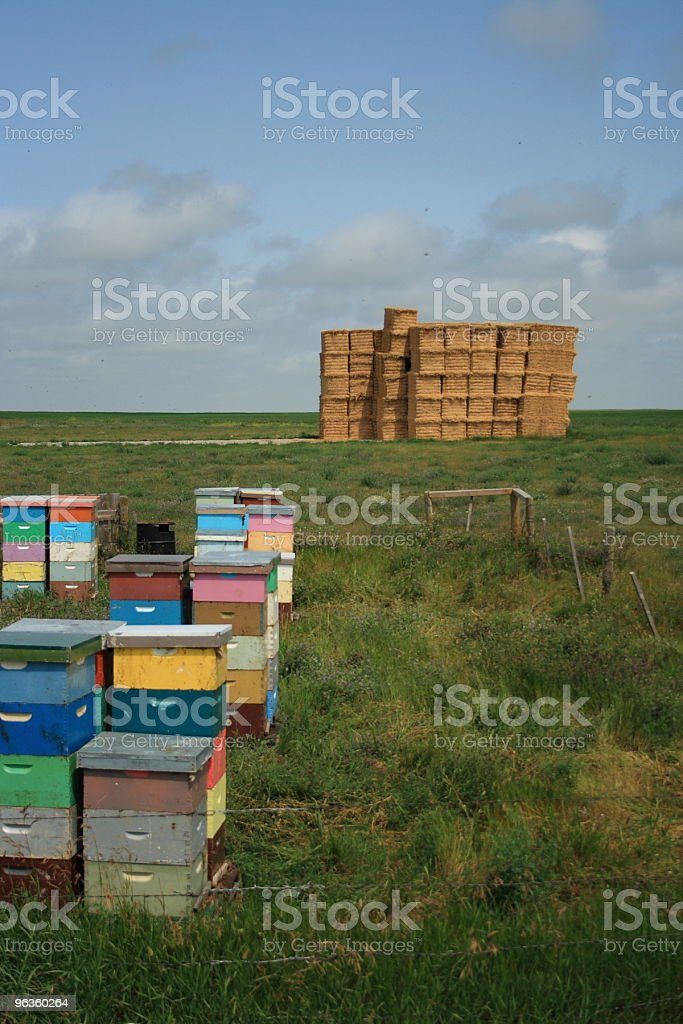 multicolored bee hives stacked upon one another with haystack royalty-free stock photo