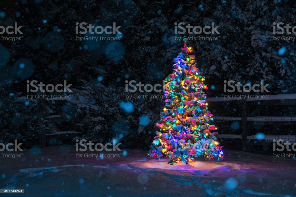 Multi-Colored Christmas tree at night while snowing stock photo