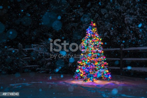 multicolored christmas tree at night while snowing stock photo 491749240 istock - Multi Colored Christmas Trees