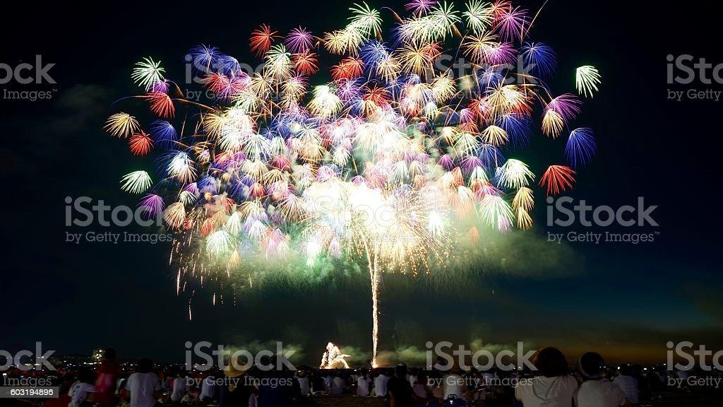 Multicolored fuegos artificiales - foto de stock