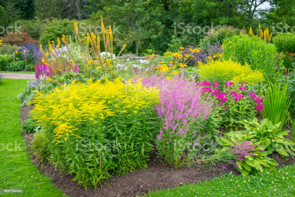 Multicolored flowerbeds stock photo
