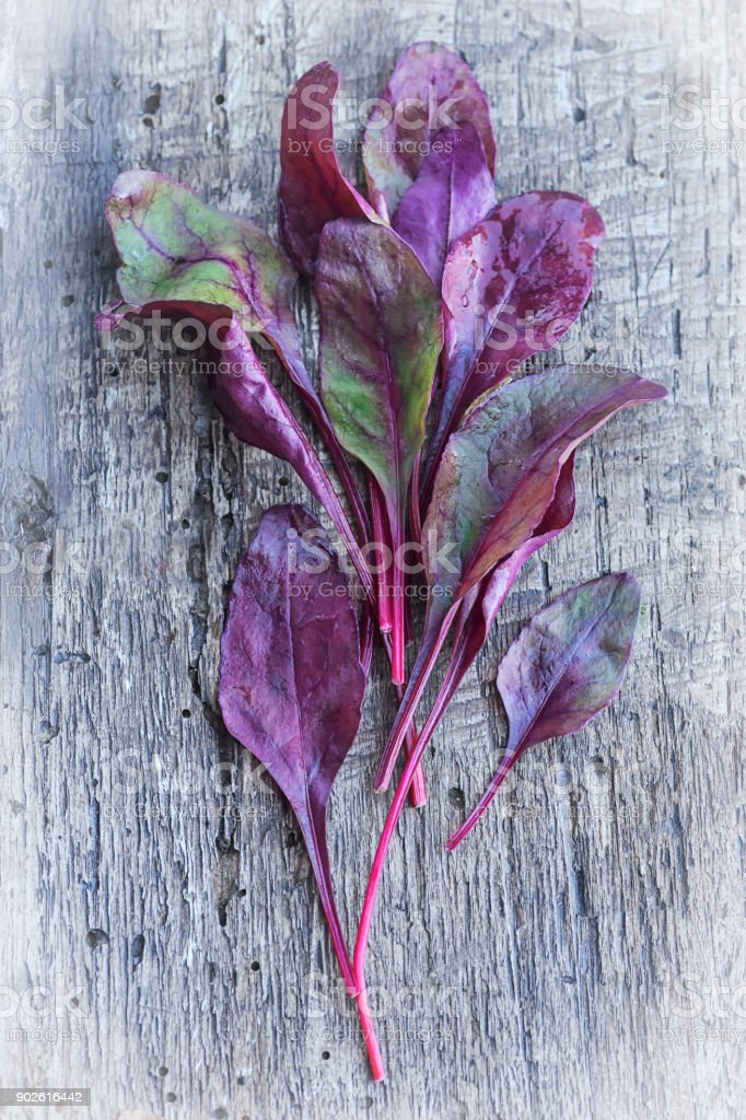 Multicolored fresh beet leaves on rustic  wooden background. Healthy,  green, vegan food concept. stock photo