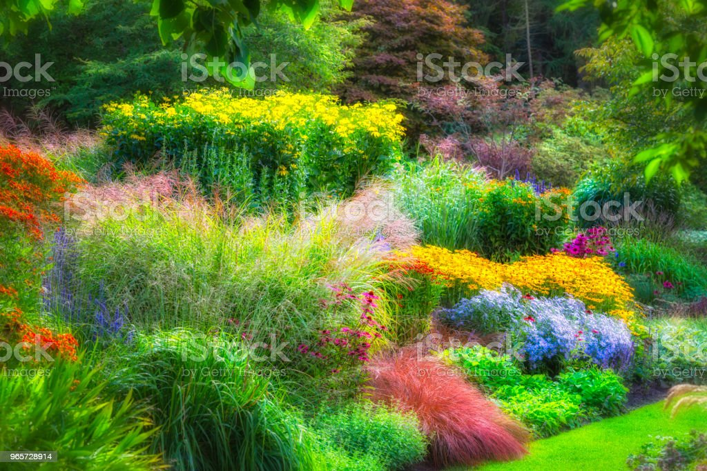Multicolored garden in bloom - Royalty-free Beauty In Nature Stock Photo